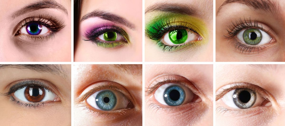Contact Lenses - Whalley Optical